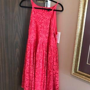 Torrid Pink Dress